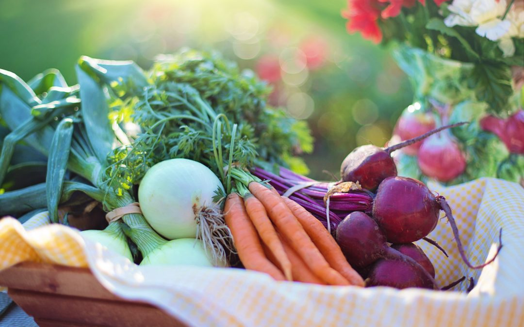 The Building Blocks of Self Care- Nutrition